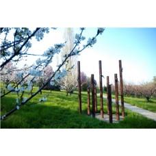 Giardini di Maggio 2013 - Domenica tra Arte e natura